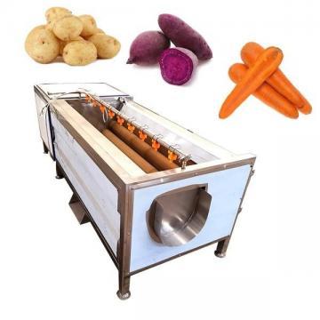 蔬菜刷洗机